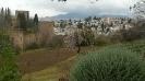 Andújar 2016